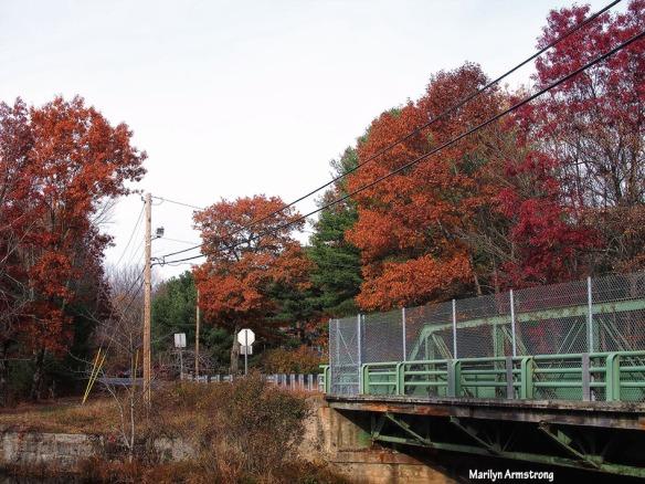 72-bridge-late-autumn-1031_042