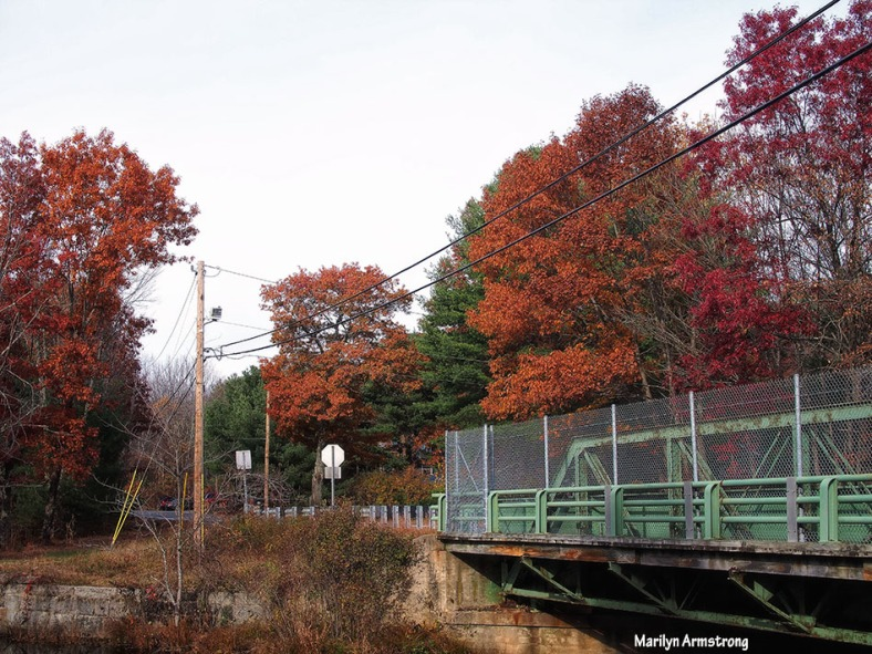 72-bridge-late-autumn-1031_042