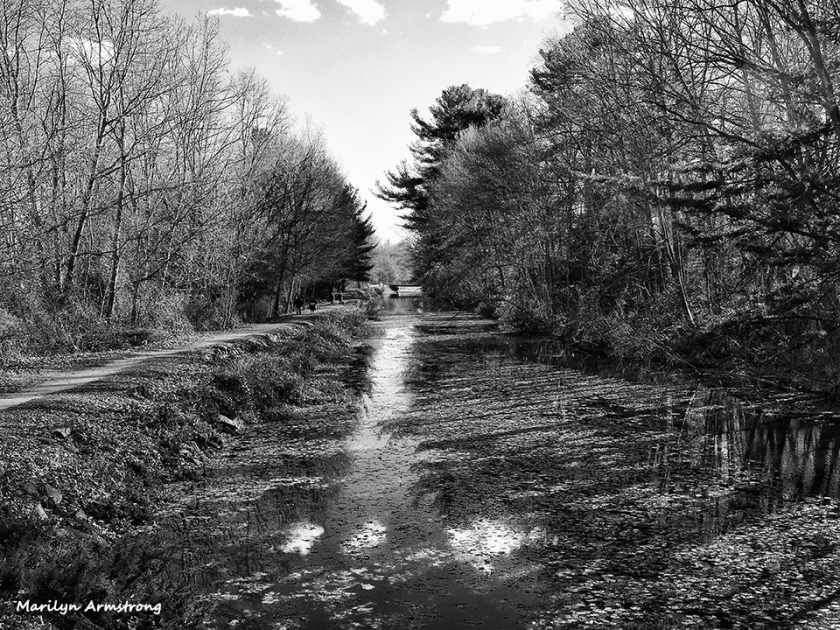Water shining in the Blackstone Canal