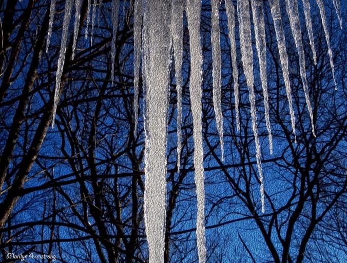 BW icicles monochrome