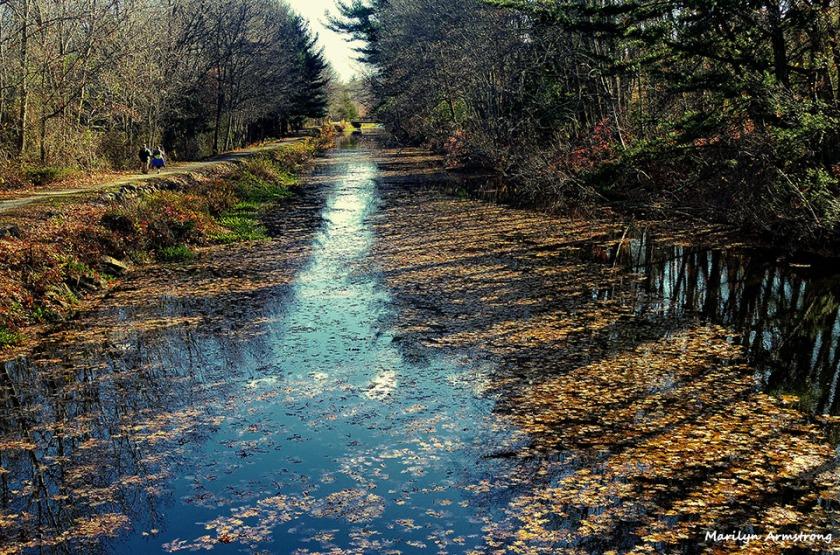 72-Canal-Cross-Proc-Uxbridge-110815_084