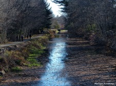72-Canal-RiverBend-110815_003