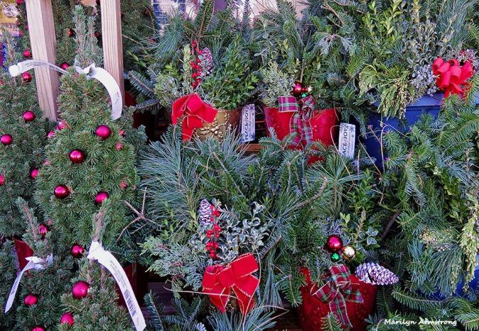 72-Early-Christmas--112015_19