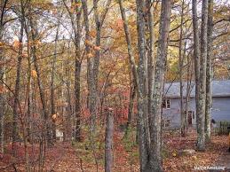 72-home-late-autumn-1031_092