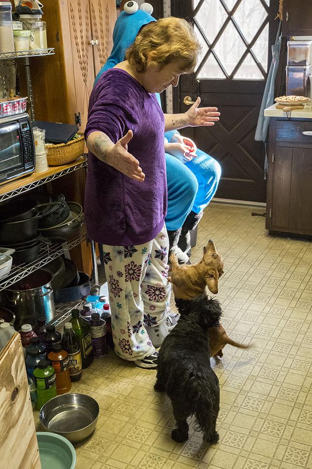 72-Kitchen-Doggies