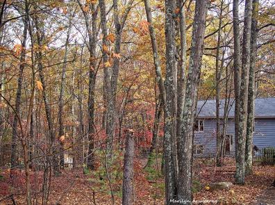 72-late-autumn-1031-new_092