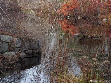 72-late-autumn-1031-new_100