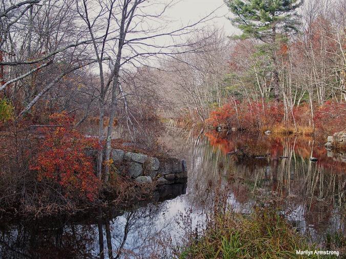 72-late-autumn-1031_023