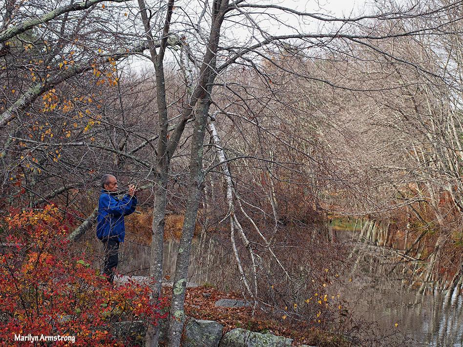 72-late-autumn-1031_094