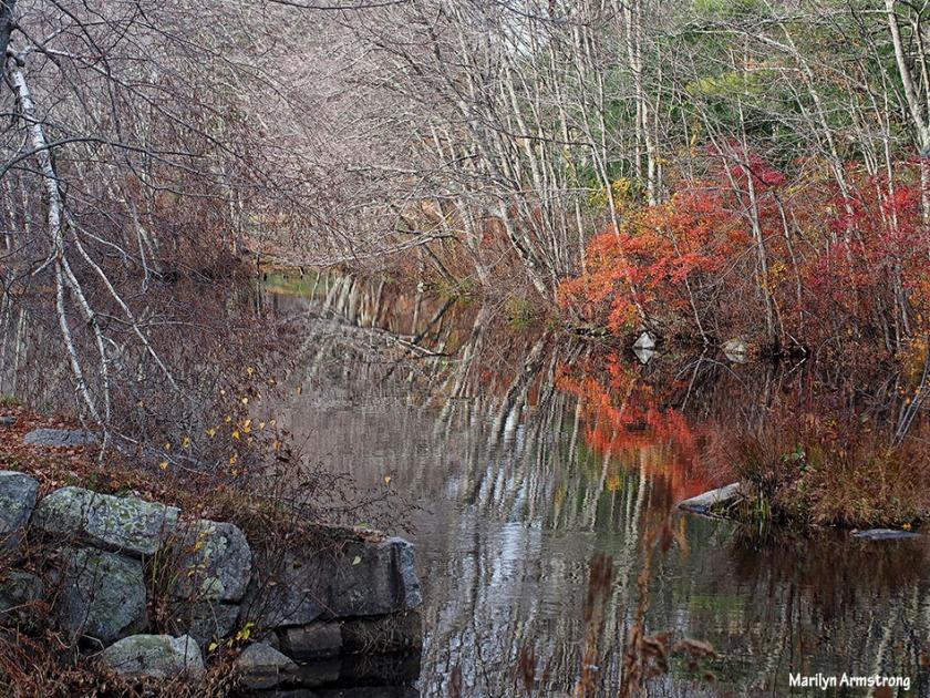 72-late-autumn-1031_097