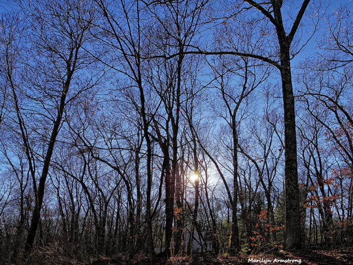 72-Late-Woods-Wide-Angle-Driveway-112015_14