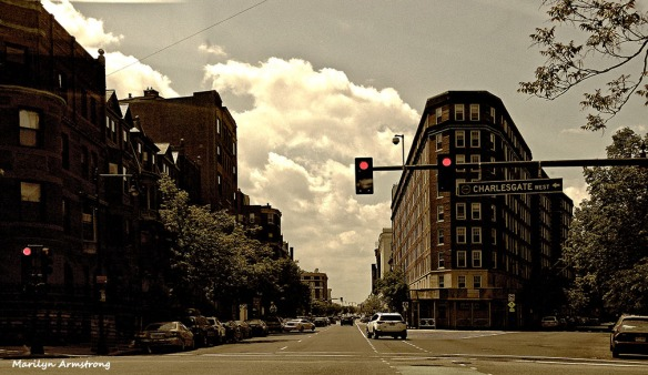 Buildings and streets trisect the visual space in Brookline, MA