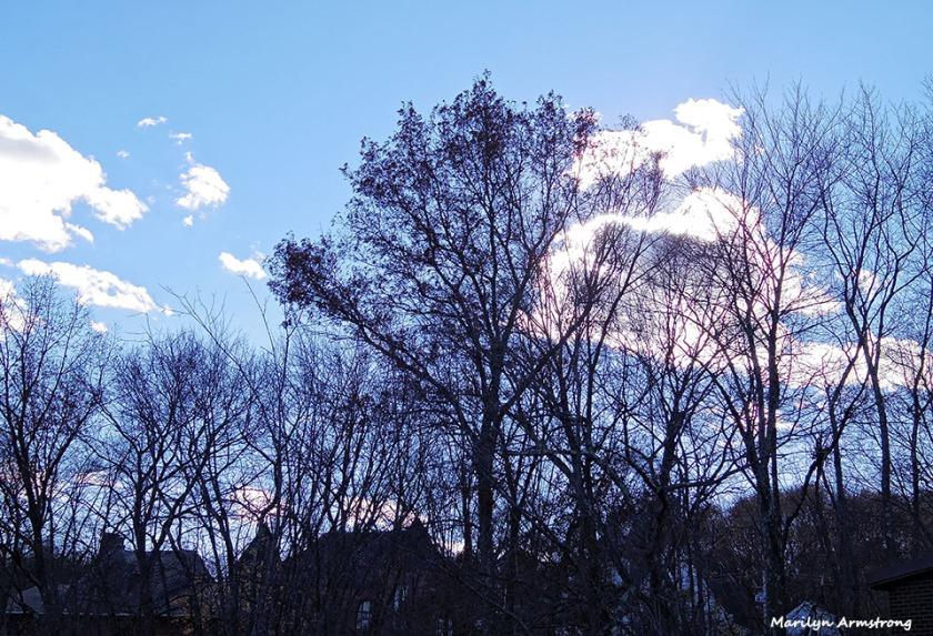 72-Sky-Uxbridge-110815_079