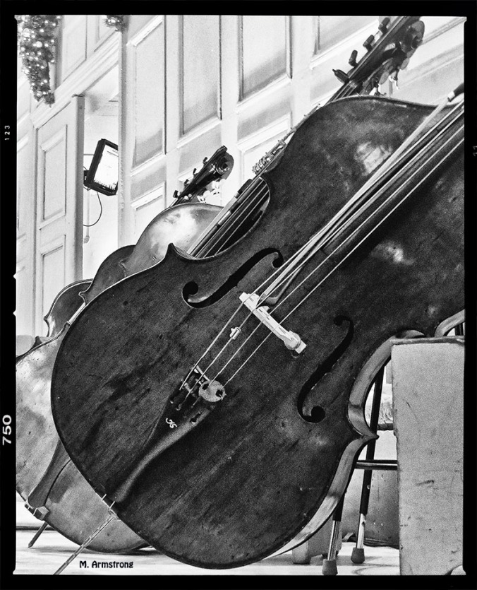 Bass fiddle at the Pops