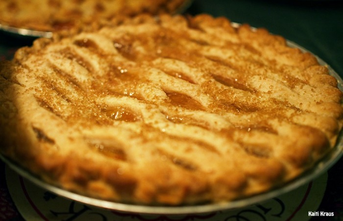 72-pies-kk-christmas-day-2015_081