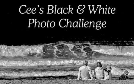 Cee's Black & White Photo Challenge Badge