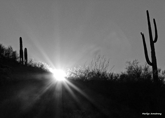72-BW-Light of the desert-MAR-Superstition-011316_311