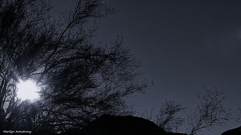 72-BW-Light of the desert-MAR-Superstition-011316_359