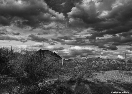 72-BW-newer-MAR-Phoenix-Mountains-Afternoon-01062015_060