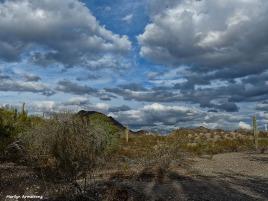 The desert near Phoenix, Arizona