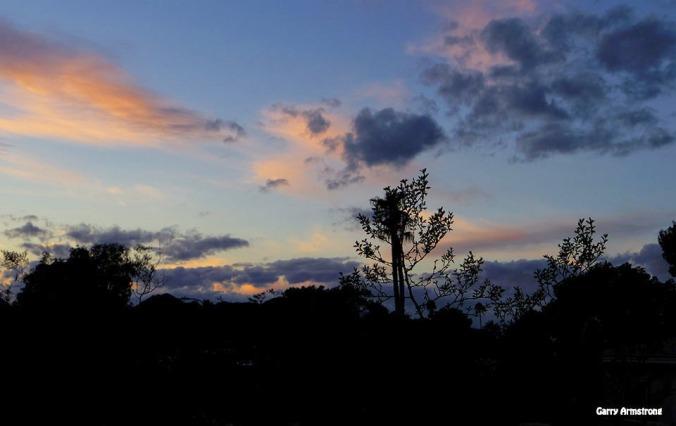 72-GAR-Sunset-Phoenix-Cactus-01062015_202