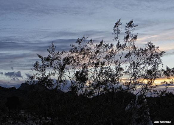 72-GAR-Sunset-Phoenix-Mar-01062015_205