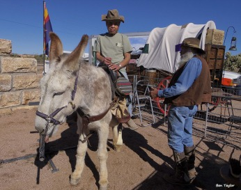 72-Garry on donkey by Ben-Superstition-011316_106
