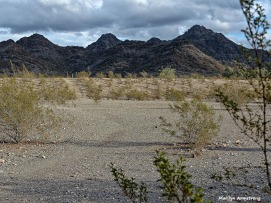 72-MAR-Phoenix-Mountains-Perspective-01062015_006