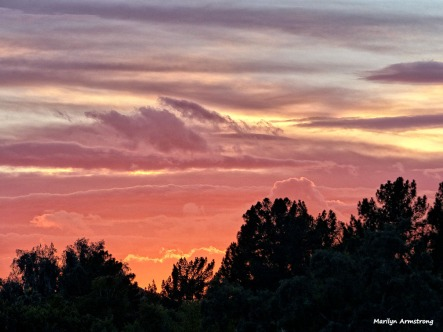 72-MAR-Phoenix-Mountains-Sunset-01062015_165