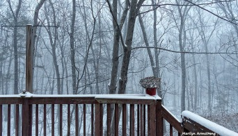 72-Memory-of-Summer-Snow-01232016_05
