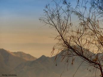 72-Mountain-Bi-Tonal-MAR-Sunday-011016_008