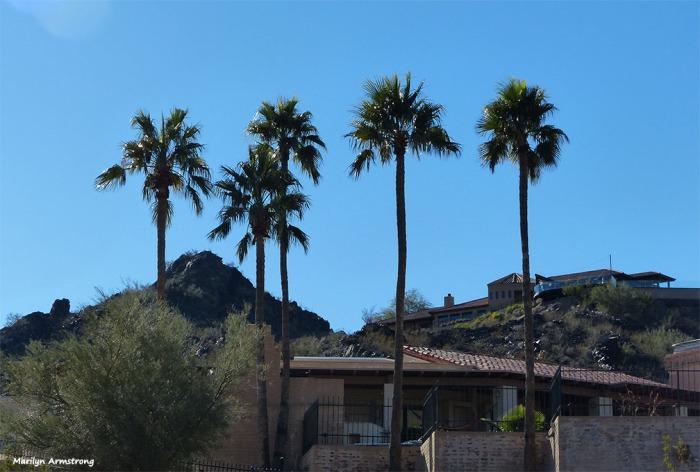 72-Mountainside-MAR-Phoenix-011216_009