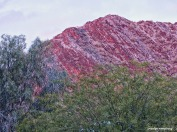 72-Red-Mountain-Sunset-010816_011