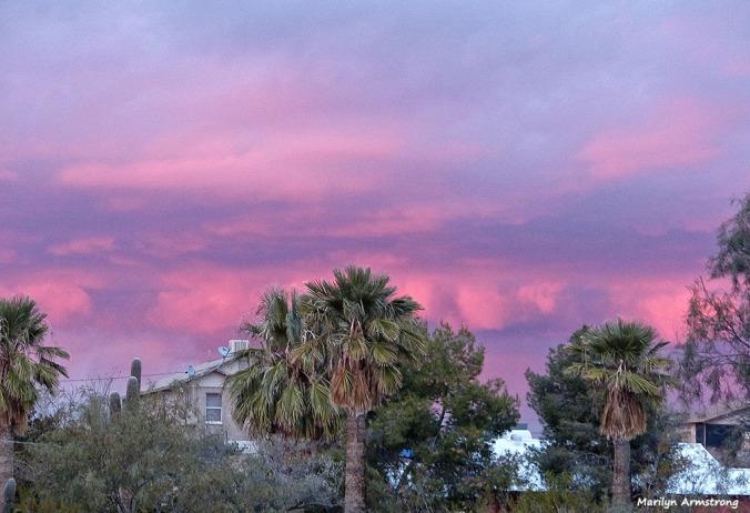 72-Sunset-010816_019