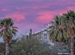 72-Sunset-010816_020