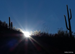72-Sunset-Desert-MAR-Superstition-011316_311