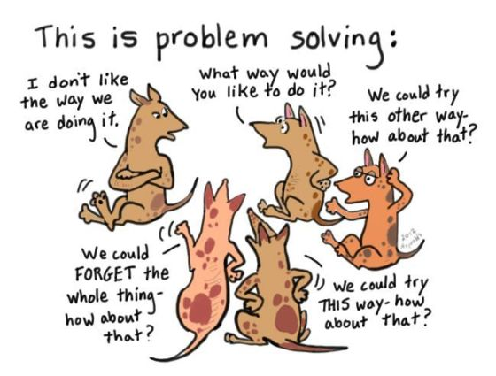 problem solving dogs