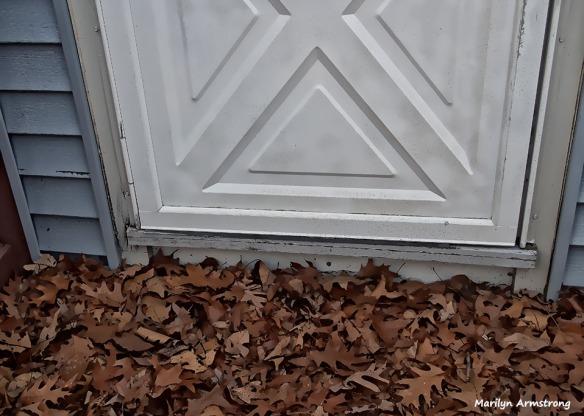 72-back-door-leap-day-022916_016