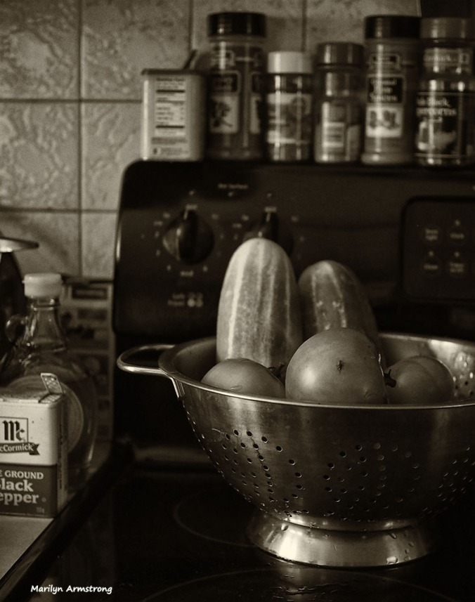 72-bw-cukes-tomatoes_10