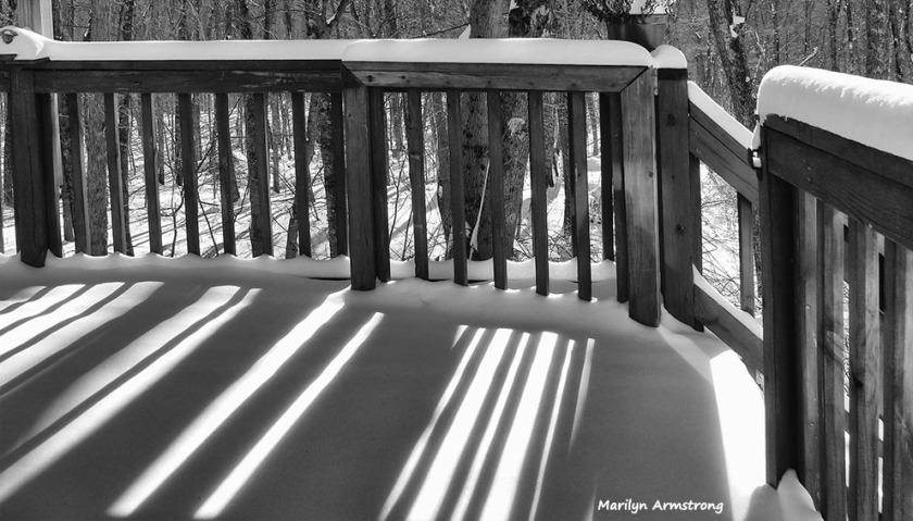 72-BW-Light on Snowy-Day-012416_01