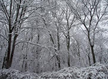 72-edgy-snow-020516_11