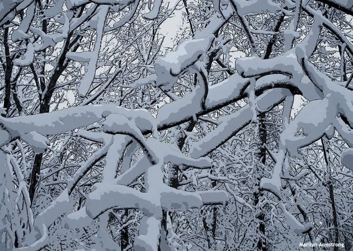 72-poster-snow-020516_27