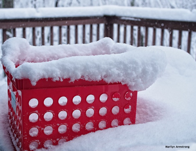 72-red-basket-snow-020516_34