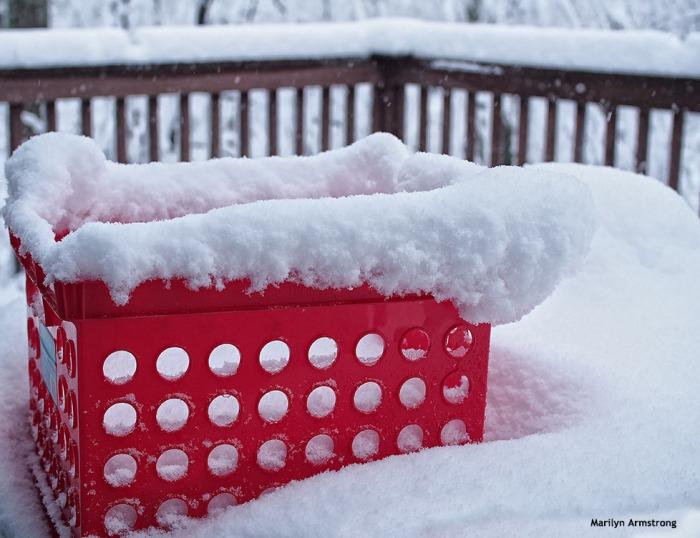 72-red-basket-snow-020516_34