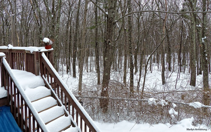 72-Steps-Snow-Monday-020916_006
