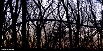 72-Sunrise-022716_02