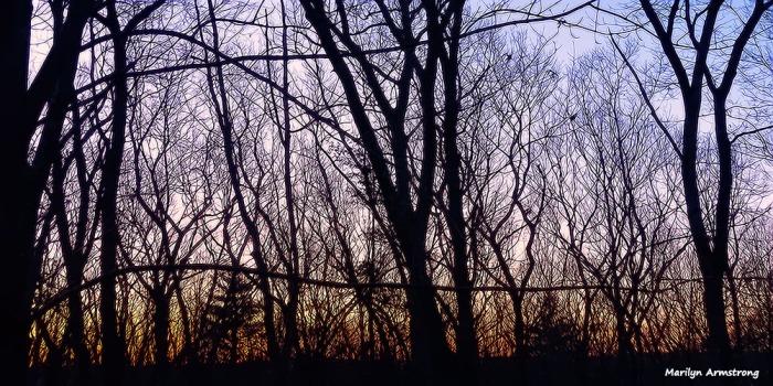 72-Sunrise-022716_03