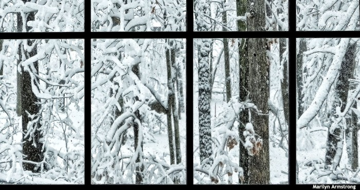 72-Window-Snow-020516_41