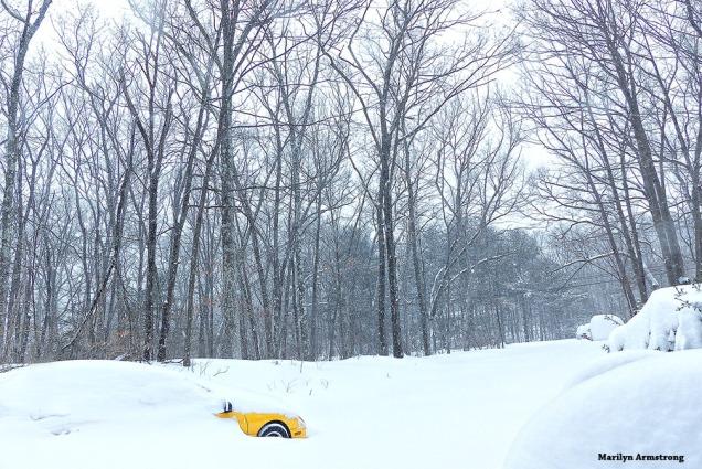 Little car buried in big snowdrift