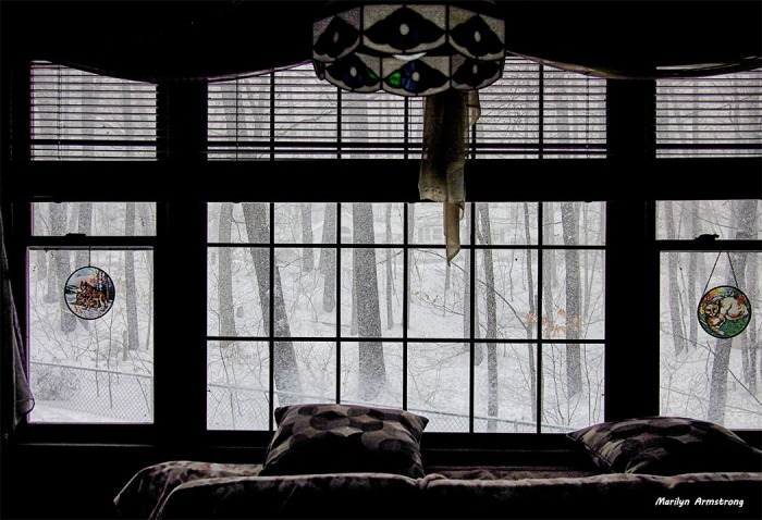 75-monochrome-snow021314_08